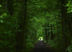 шетње у очвршћавању свежег ваздуха