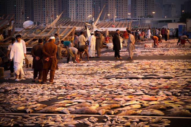 Рыбный рынок Аджмана