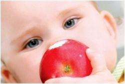 alergija u bebama 2