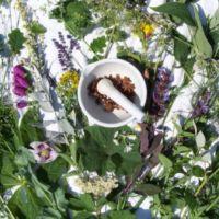 Altaic balsam na zioła