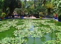 Андалузский сад в столице Марокко