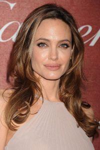 Obrázek Angeliny Jolie 8