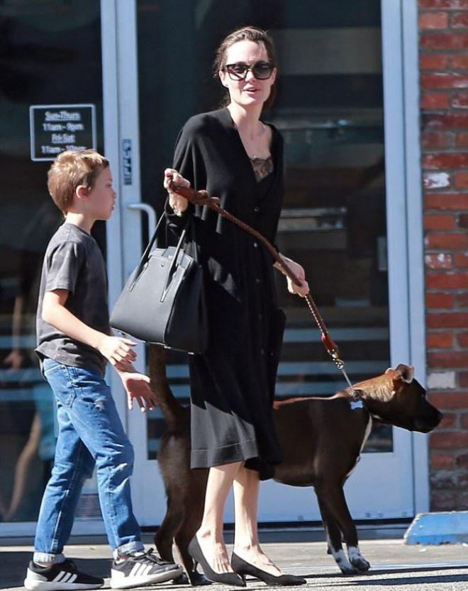 Анджелина прогулалась в магазин с сыном и собакой