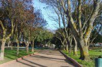 Парк в г. Анголь