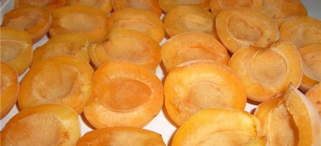 Jak zmrazit meruňky pro zimu