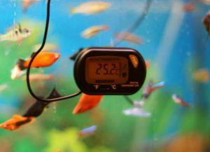 Аксесоари за аквариуми5