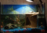 аквариј за корњаче 14