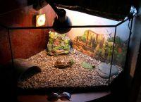 акваријум за корњачу 2