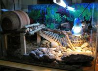 аквариј за корњачу 4