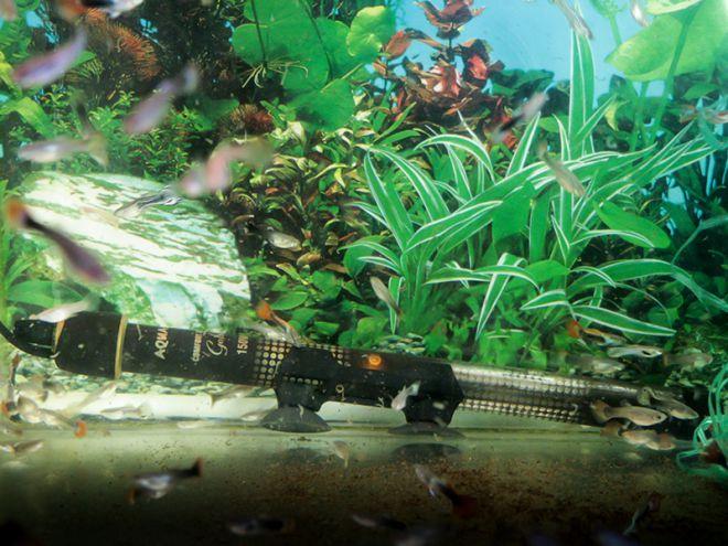 как установить нагреватель в аквариум