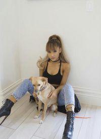 из профиля instagram со своей собакой
