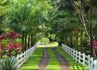 Ботанический сад «Jessamine Eden»