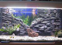 Позадина за акваријум3