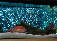 Позадина за акваријум8