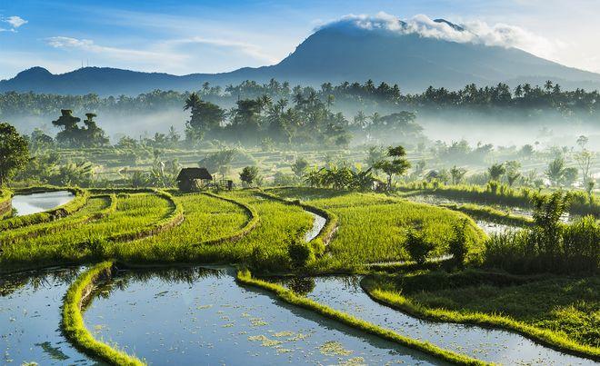 Пейзажи Бали