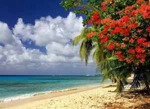 Пляж Фиттс-Виллидж