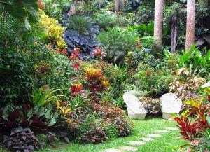 Экзотические растения в садах Энтони Ханта