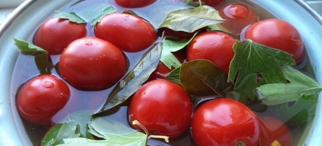 Sveže soljeni paradižnik v sodu - recept