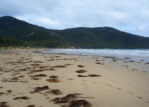 Oberon Bay Beach