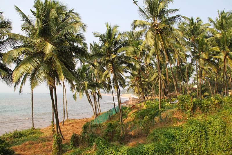 Plaže sjevernog Goa8