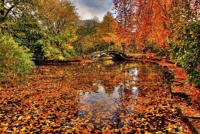 Осень в Бергене