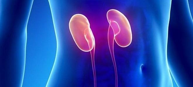 bacanje urina iz mokraćnog mjehura u uretere