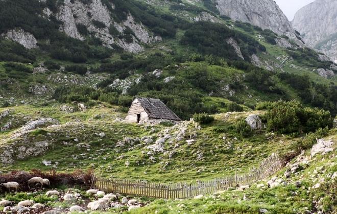 Катуна - домик пастухов, пасущих овец на склонах горы