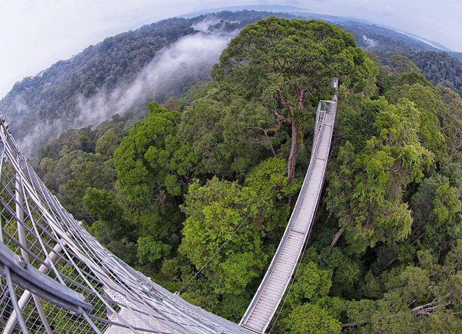 Национальный парк Улу-Тембуронг