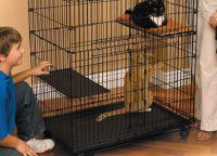 Kavez za mačke 6
