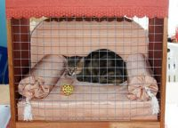 Kavez za mačke7