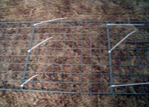 DIY Świnka morska Cage6