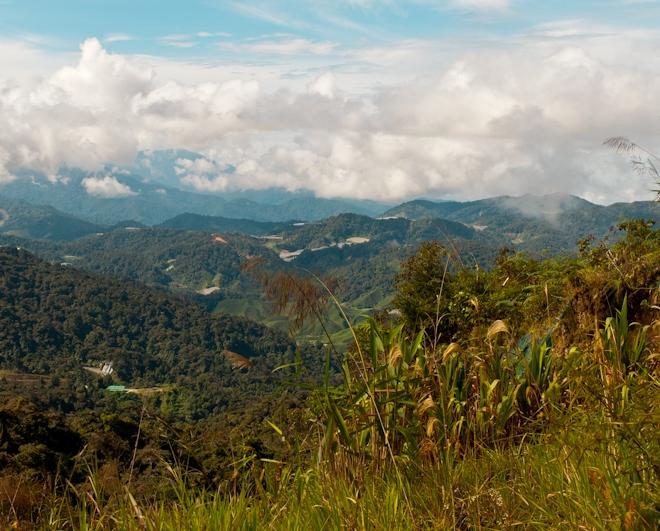 Вид на горы и тропические леса