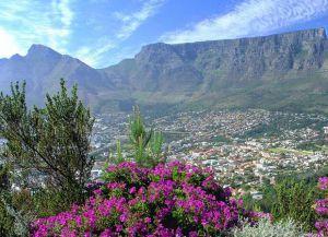Кейптаун и горы