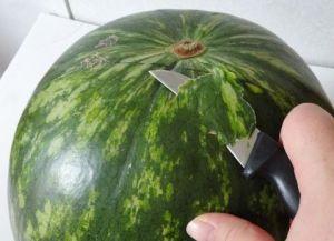 Rzeźbiarstwo warzyw i owoców 1