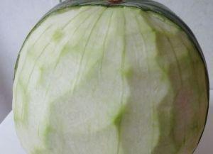 Rzeźbiarstwo warzyw i owoców 3