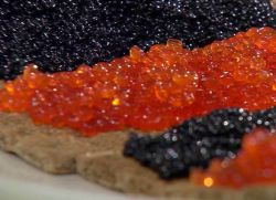 skład ikry wodorostów