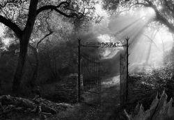 љубав почиње на гробљу