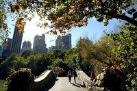 Сентрал Парк в Ню Йорк8