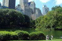 Сентрал Парк в Ню Йорк9