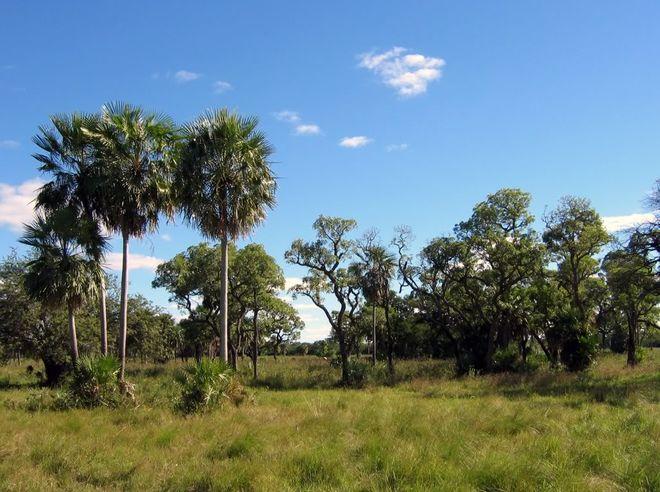 Земли Чако, на территории которых разбит исторический парк национальной обороны