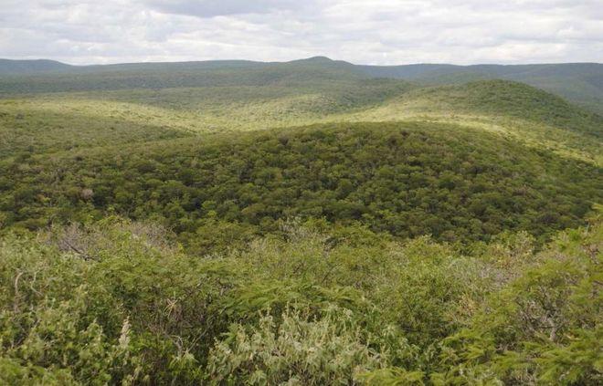 Холмистая местность Cerro Leon