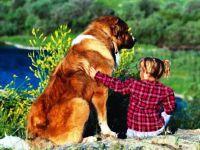otroško fotografsko zasedanje v naravi 11