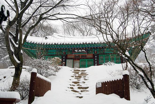 Чондынса в снегу