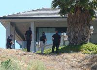 Полицейские не могли выманить Криса Брауна из дома на протяжении 11 часов