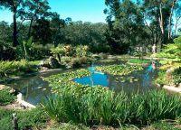 Региональный ботанический сад северного побережья