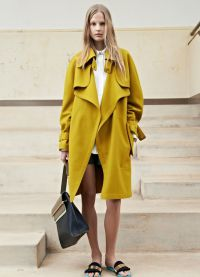 Mustard Color25
