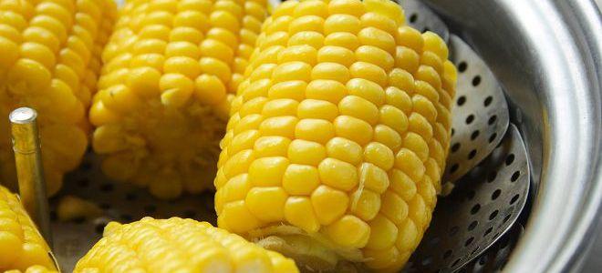 dieta na kukurydzy