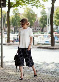 цулоттес панталоне 2015 4