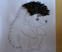domácí hedgehog 2
