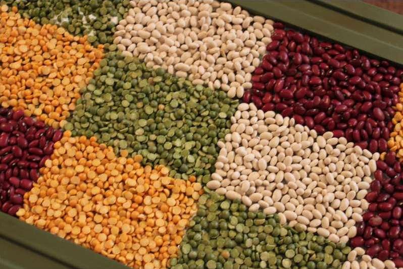 obrti iz sjemena i žitarica to čine sami9
